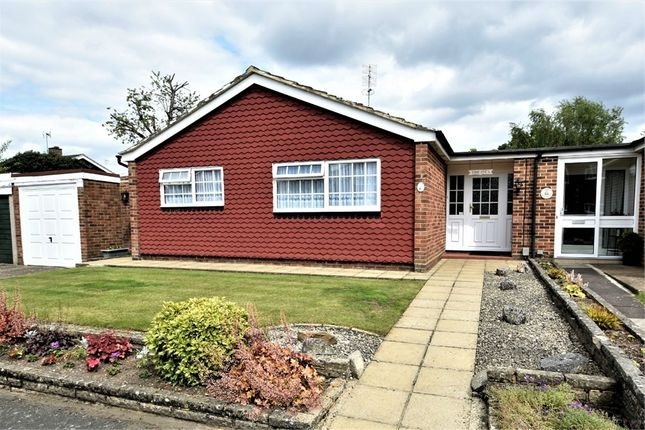 Thumbnail Detached bungalow for sale in Silver Drive, Frimley, Camberley, Surrey