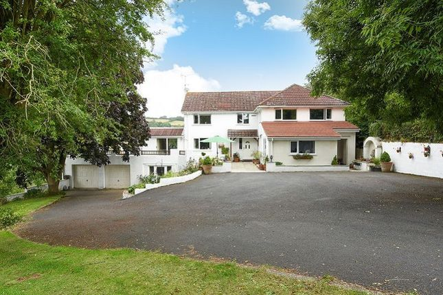Thumbnail Detached house for sale in Little Hill, Orcop, Herefordshire