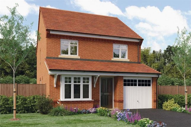 """Thumbnail Detached house for sale in """"Hallam"""" at Ruby Lane, Mosborough, Sheffield"""