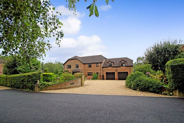 Thumbnail Detached house for sale in The Village Green, Heywood, Westbury, Wiltshire
