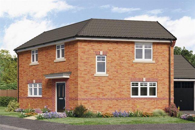 "Thumbnail Detached house for sale in ""Kipling"" at Croston Road, Farington Moss, Leyland"