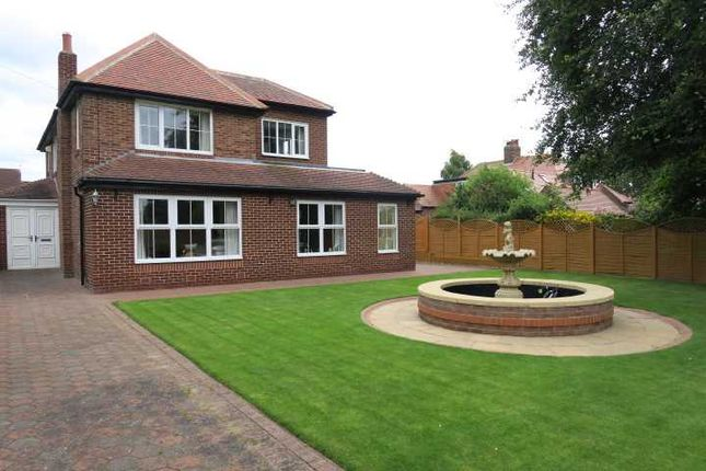 Thumbnail Detached house for sale in Cleaside Avenue, South Shields