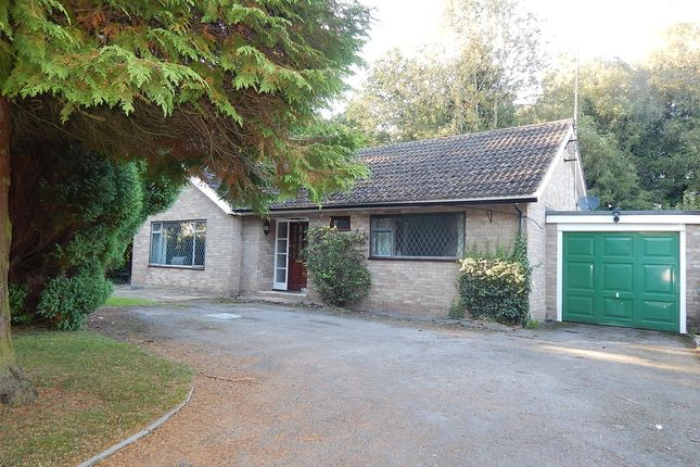 Thumbnail Detached bungalow to rent in Cothill Road, Dry Sandford, Abingdon
