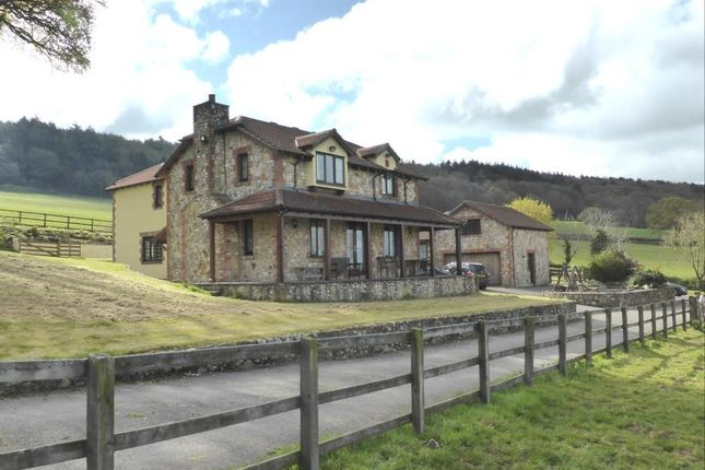 Thumbnail Equestrian property for sale in Ottery St. Mary, Devon