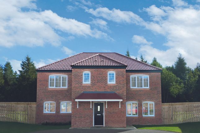 Thumbnail Detached house for sale in Loansdean, Morpeth