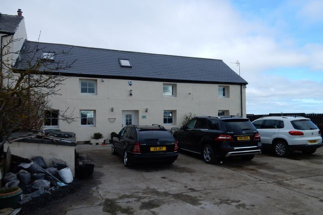 Thumbnail Semi-detached house for sale in Seaton, Seaham