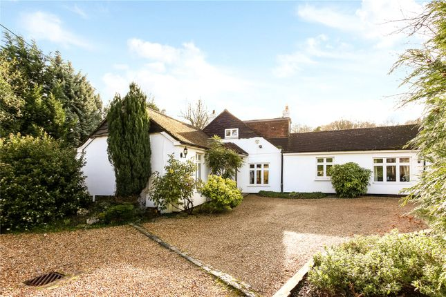 Thumbnail Bungalow for sale in Windsor Road, Chobham, Surrey