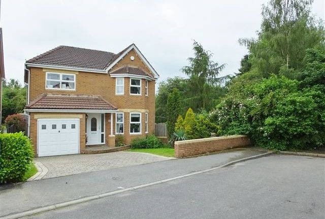 Thumbnail Detached house for sale in Donstone View, Dinninigton, Sheffield
