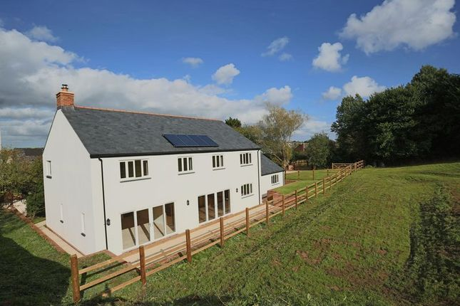 Thumbnail Detached house for sale in Copplestone, Crediton