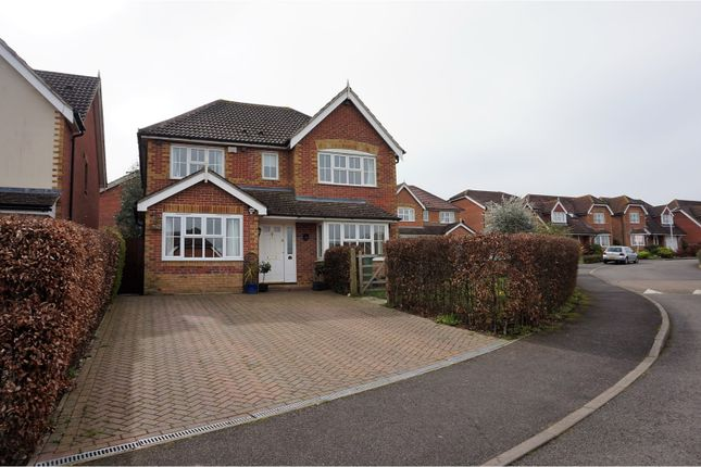 Thumbnail Detached house for sale in Manor Farm Close, Hythe