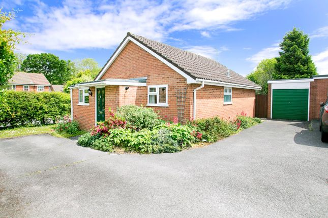 Thumbnail Detached bungalow for sale in Ashfield, Chineham, Basingstoke