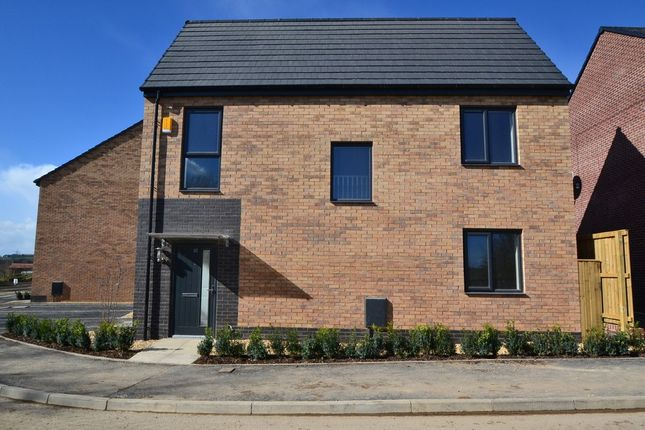 Thumbnail Detached house to rent in Curlew View, South Elmsall, Pontefract