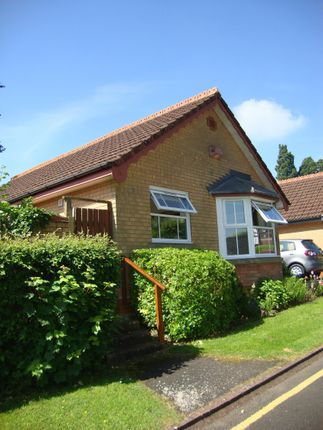 Thumbnail Bungalow to rent in Brooksby Grove, Dorridge, Solihull