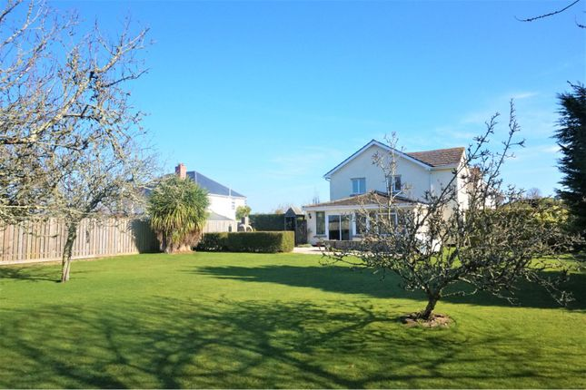 Thumbnail Detached house for sale in Island View, Kingsbridge