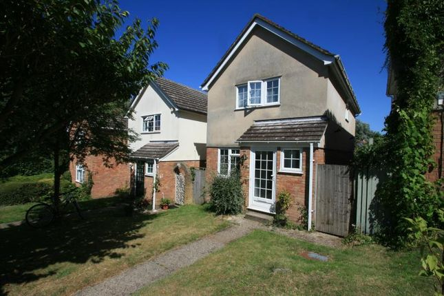 Thumbnail Detached house to rent in St Albans Road, Colchester, Essex