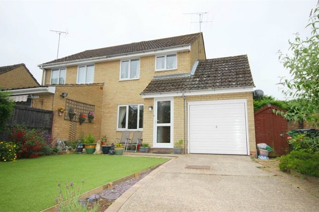 Thumbnail Semi-detached house to rent in Wakelin Way, Witham, Essex