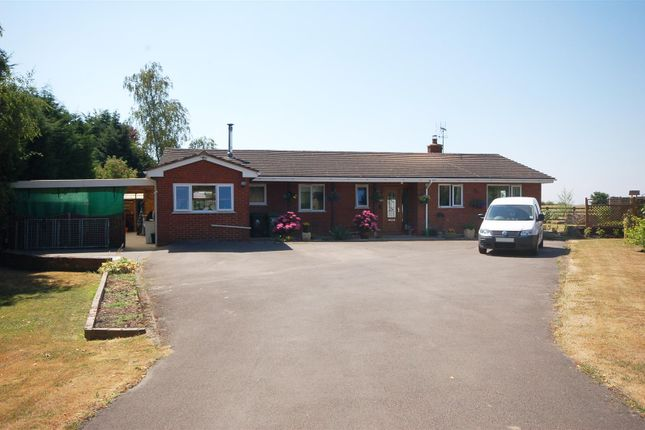 Thumbnail Detached bungalow for sale in Northwood Green, Westbury-On-Severn