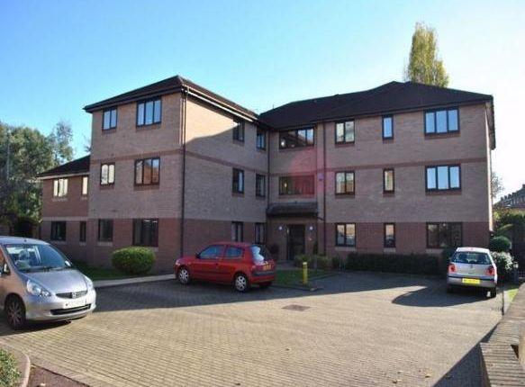 Thumbnail Flat to rent in Upper High Street, Taunton