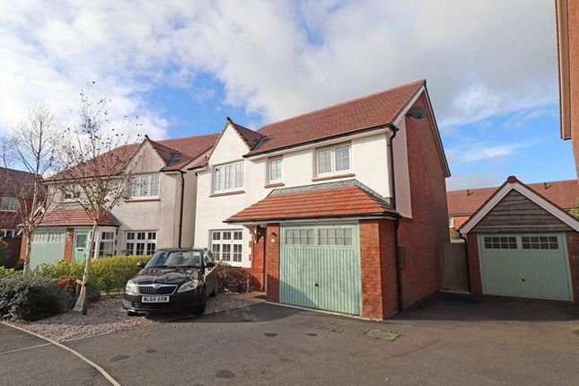 Thumbnail 4 bed detached house to rent in Kingdon Way, Holsworthy