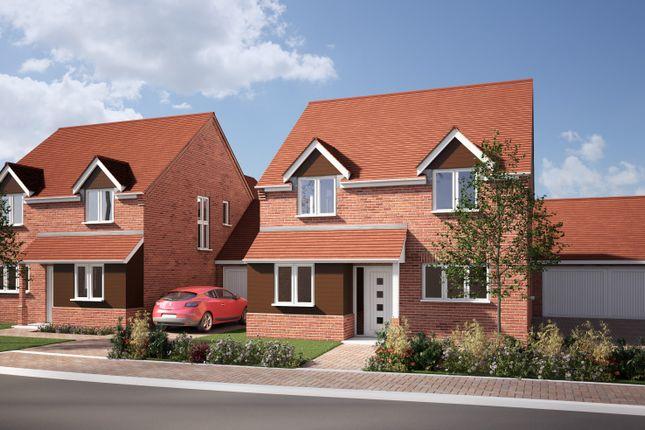 Thumbnail Detached house for sale in Off Broad Oak Way, Stevenage