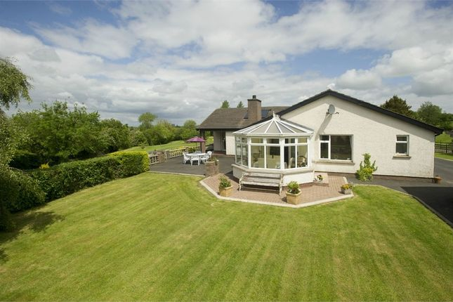 Thumbnail Detached bungalow for sale in Corcreevy Road, Richhill, Armagh