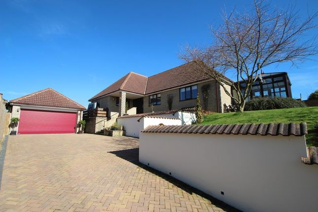 Thumbnail Detached bungalow for sale in Sutton Mallet, Bridgwater