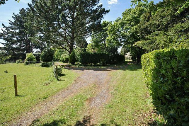Photo 15 of Spear Hill, Ashington, Pulborough RH20