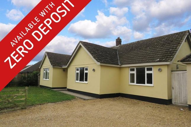 Thumbnail Detached bungalow to rent in Chequers Lane, Great Ellingham, Attleborough