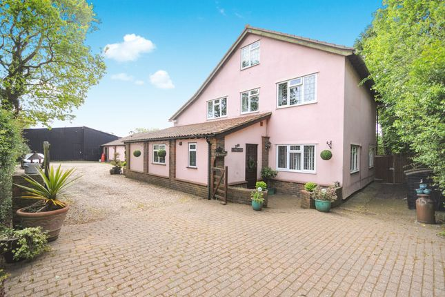 Thumbnail Detached house for sale in School Road, Rayne, Braintree