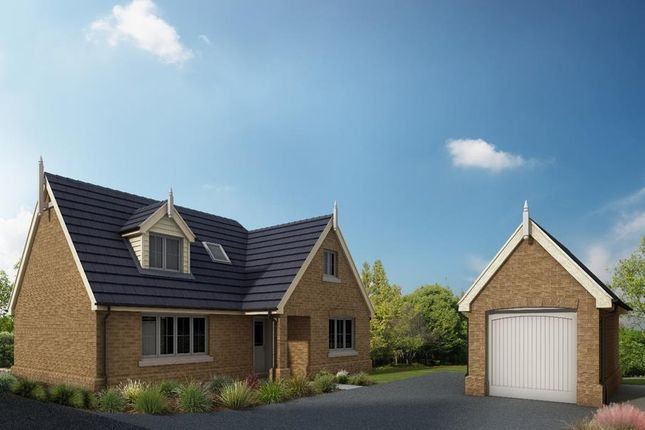 Thumbnail Detached house for sale in Hardwick Court, Holme, Peterborough