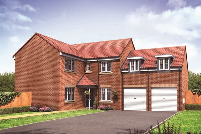 "Thumbnail Detached house for sale in ""The Oxford "" at Northborough Way, Boulton Moor, Derby"