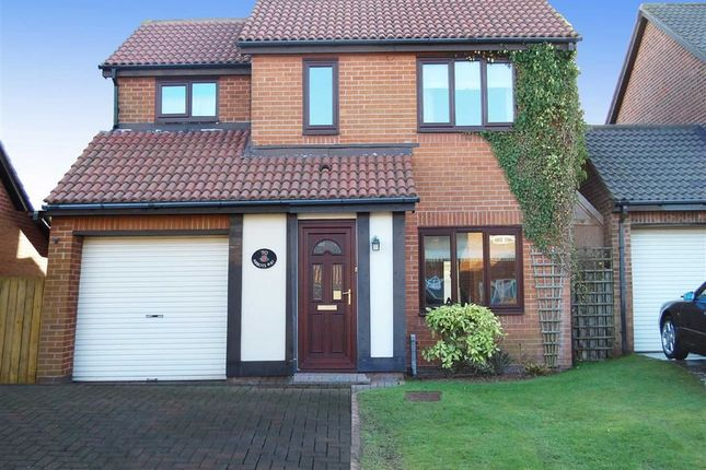 Thumbnail Detached house to rent in Abbots Way, Preston Farm, Tyne And Wear