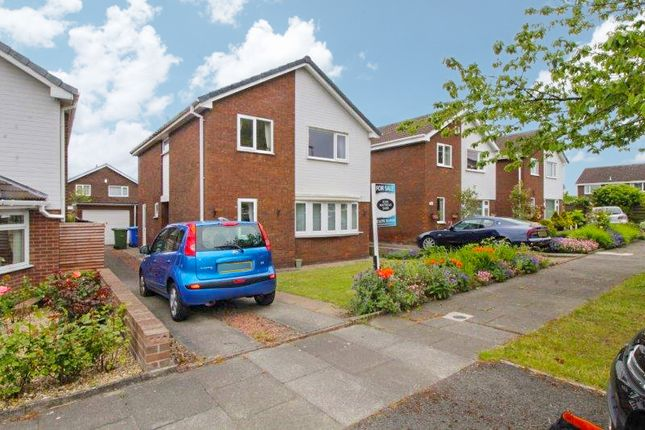 Thumbnail Detached house for sale in Herring Gull Close, Blyth