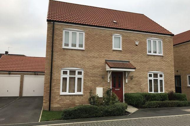 Thumbnail Detached house to rent in Bellona Close, Hebburn