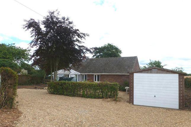 Thumbnail Bungalow to rent in Common Road, East Tuddenham, Dereham