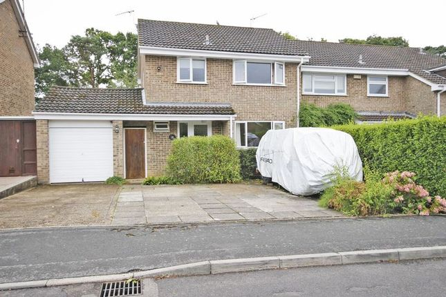 Thumbnail Terraced house to rent in Elmers Way, Bransgore, Christchurch