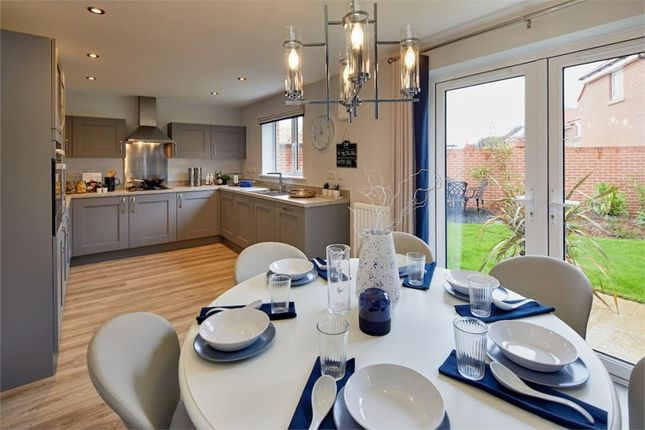 """Thumbnail Detached house for sale in """"Tressell"""" at Milby, Boroughbridge, York"""