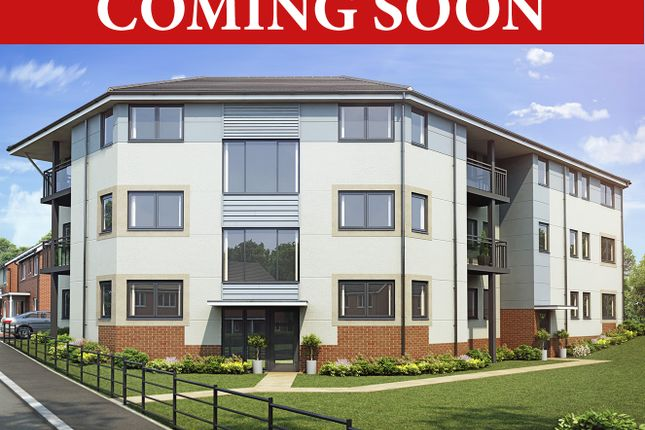 Thumbnail Flat for sale in Coming Soon, Perry Common, Birmingham