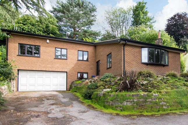 Thumbnail Detached house for sale in Redcliffe Road, Mapperley Park, Nottingham