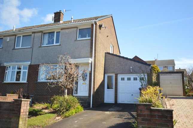 Thumbnail Semi-detached house to rent in Greenlands Avenue, Whitehaven