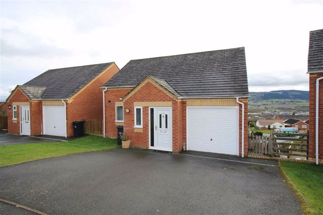 Thumbnail Detached house for sale in 3, Brynfa Avenue, Welshpool, Powys