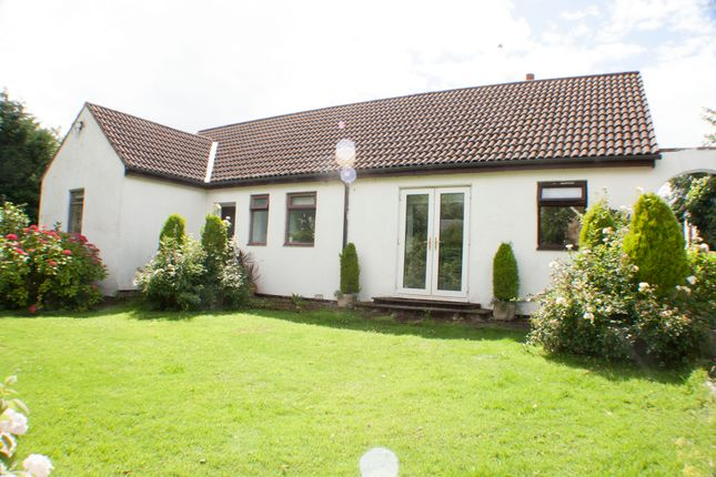 Thumbnail Bungalow for sale in Studley Drive, Swarland, Morpeth