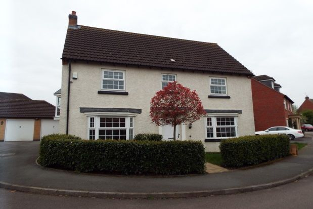 Thumbnail Detached house to rent in Billesdon Close, Leicester