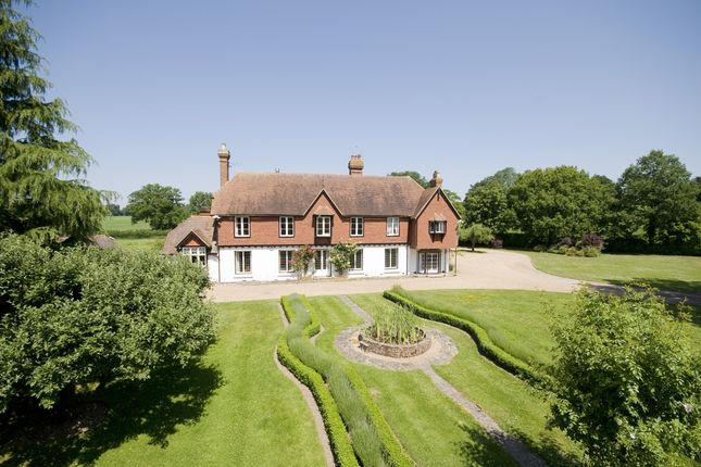 Thumbnail Detached house to rent in Weare Street, Ockley, Dorking