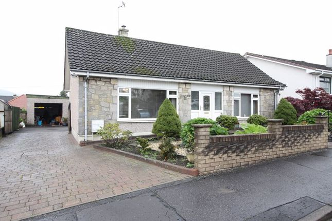 Thumbnail Property for sale in Norwood Avenue, Alloa