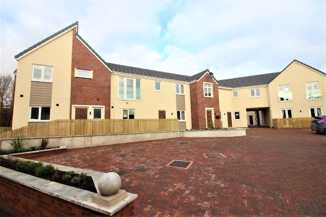 Thumbnail Flat for sale in Marine Gardens, Paignton