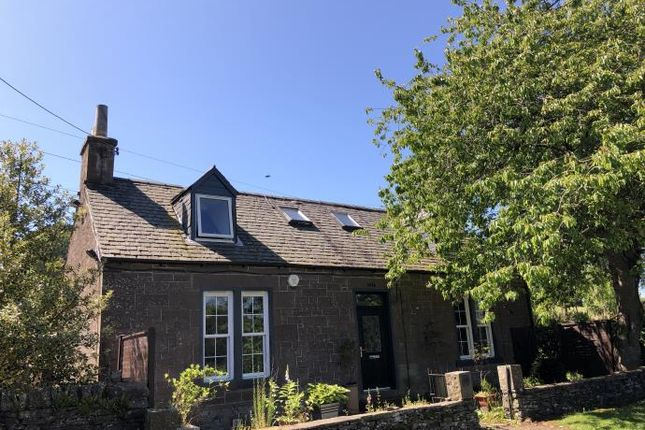 Thumbnail Cottage to rent in Rosemill Road, Bridgefoot, Dundee