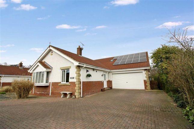 Thumbnail Detached bungalow for sale in Monmouth Court, Widdrington, Morpeth