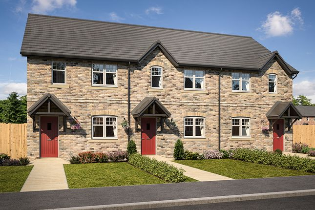 "Thumbnail Terraced house for sale in ""Gibside"" at Mason Avenue, Consett"