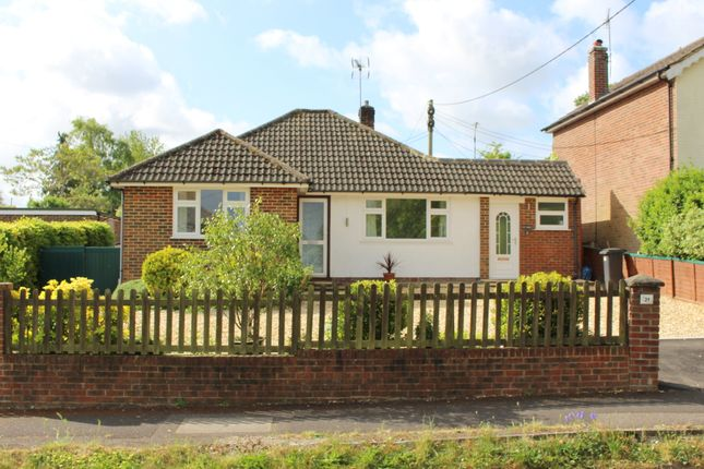 Thumbnail Semi-detached bungalow to rent in Grange Road, Alresford